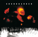 Superunknown (20th Anniversary)/Soundgarden