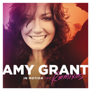 In Motion (The Remixes)/Amy Grant