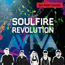 Aviva/Soulfire Revolution