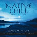 Native Chill/David Arkenstone