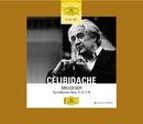 Bruckner: Symphonies Nos. 3-5; 7-9/Sergiu Celibidache