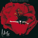 Adore (Super Deluxe)/The Smashing Pumpkins