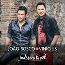 Indescritível/João Bosco & Vinicius