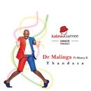 Thandaza (feat. Heavy-K)/Dr Malinga