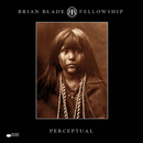 Perceptual(Remastered)/Brian Blade Fellowship