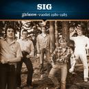 Johanna-vuodet 1980-1983/SIG