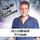 Secrets (From The Voice Of Germany)/Andrei Vesa
