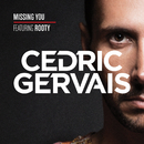Missing You (feat. Rooty)/Cedric Gervais