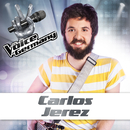 Don't You Worry Child (From The Voice Of Germany)/Carlos Jerez