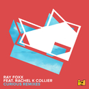 Curious (Remixes) (feat. Rachel K Collier)/Ray Foxx
