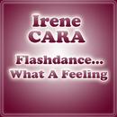 Flashdance... What A Feeling/Irene Cara