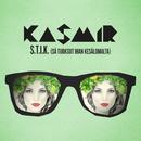 S.T.I.K. (Sä tuoksut ihan kesälomalta) (Radio Edit)/Kasmir