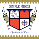 Sparkle In The Rain (Super Deluxe)/Simple Minds
