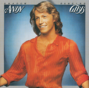 SHADOW DANCING/ANDY/Andy Gibb