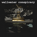 Brotherhood Of Electric/Wellwater Conspiracy