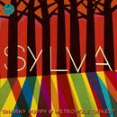 Sylva/Snarky Puppy, Metropole Orkest
