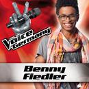 Wenn Worte meine Sprache wären (From The Voice Of Germany)/Benny Fiedler