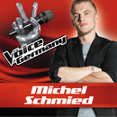 Such A Shame (From The Voice Of Germany)/Michel Schmied