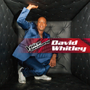 When Love Takes Over (From The Voice Of Germany)/David Whitley