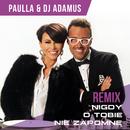 Nigdy O Tobie Nie Zapomne (Remix)/Paulla, DJ Adamus