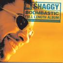 Boombastic/Shaggy