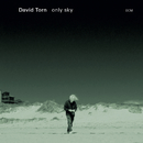 Only Sky/David Torn