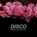 Pimeällä puolella/Disco