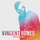 Shaded Soul!/Vincent Bones