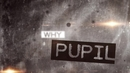 Why (Lyric Video)/Pupil