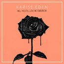 Will You Still Love Me Tomorrow/Karise Eden