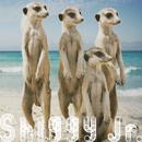 サマータイムラブ/Shiggy Jr.
