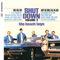 Shut Down, Vol. 2(Mono)