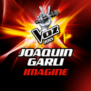 Imagine (La Voz 2015)/Joaquín Garli