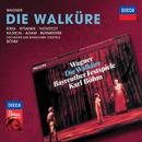 Wagner: Die Walküre/Birgit Nilsson, Leonie Rysanek, James King, Theo Adam, Orchester der Bayreuther Festspiele, Karl Böhm