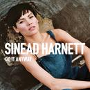 Do It Anyway (Christian Rich Rework)/Sinead Harnett