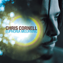 Euphoria Mourning/Chris Cornell