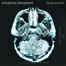 Dear Agony/Breaking Benjamin