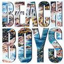 The Beach Boys/The Beach Boys