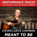 Meant To Be (Performance Tracks)/Steven Curtis Chapman