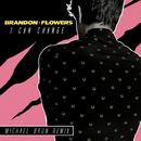 I Can Change (Michael Brun Remix)/Brandon Flowers