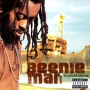 Tropical Storm/Beenie Man