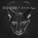 Caracal/Disclosure
