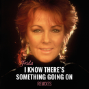 I Know There's Something Going On (Remixes)/Frida