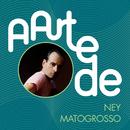 A Arte De Ney Matogrosso/Ney Matogrosso