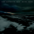 Being There/Tord Gustavsen Trio