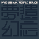 Forgotten Fantasies/David Liebman, Richard Beirach