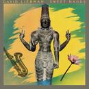 Sweet Hands/David Liebman