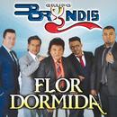 Flor Dormida/Grupo Bryndis