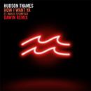 How I Want Ya (Dawin Remix) (feat. Hailee Steinfeld)/Hudson Thames
