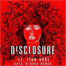 Hourglass (Catz 'N Dogz Remix) (feat. LION BABE)/Disclosure